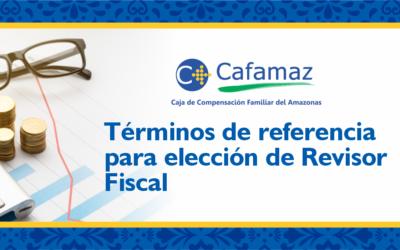 Términos y Referencias para Elección de Revisor Fiscal